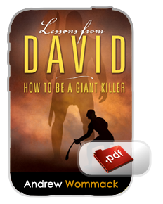 Lessons from David pdf